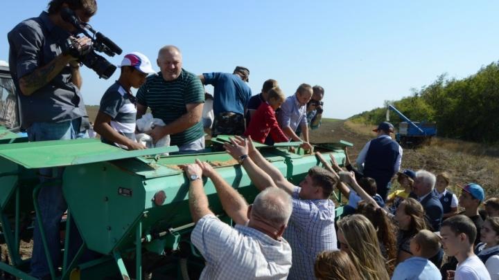 Собранным со всего мира зерном засеяли поле в Волгоградской области