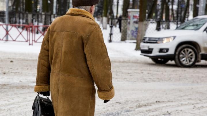 Пешеход в Ярославле пытался дать взятку гаишникам
