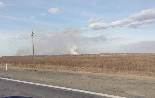 На трассе под Челябинском разгорелся лесной пожар