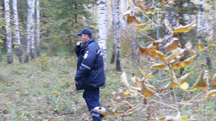 Инструкция 74.ru: что делать, если заблудился в лесу