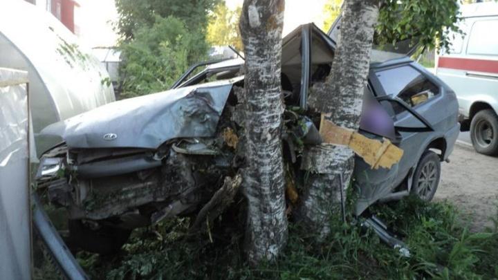 В Устьянском районе водитель отечественного авто погиб при столкновении с деревом