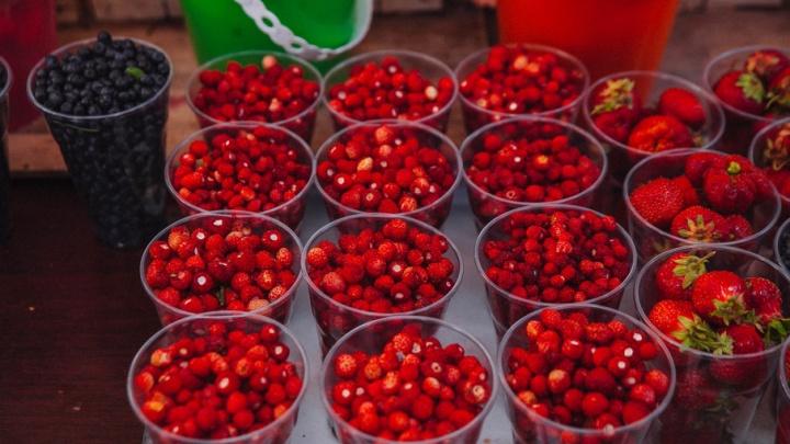 Под Тюменью поспели ягоды: сколько стоит лукошко земляники и где насобирать черники