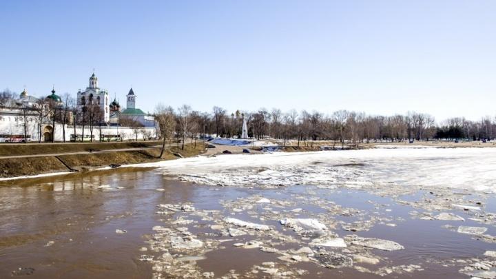 Спасатели рассказали, когда Ярославскую область затопит паводковыми водами