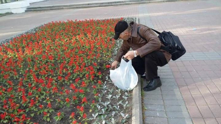 Ярославца застукали за выкапыванием цветов с городской клумбы