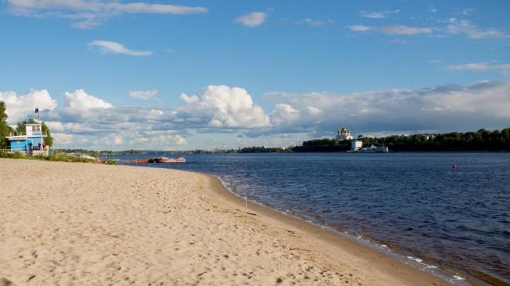 Экологи рассказали, насколько загрязнена вода в реках Ярославля