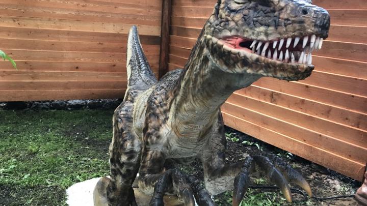 Прогулка в прошлое: в Ярославле открылся парк с ожившими динозаврами