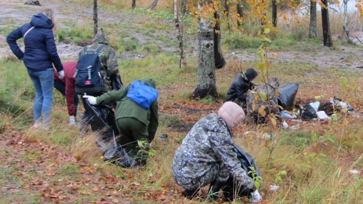 Во всероссийском субботнике «Зелёная Россия» поучаствовали 22 тысячи северян
