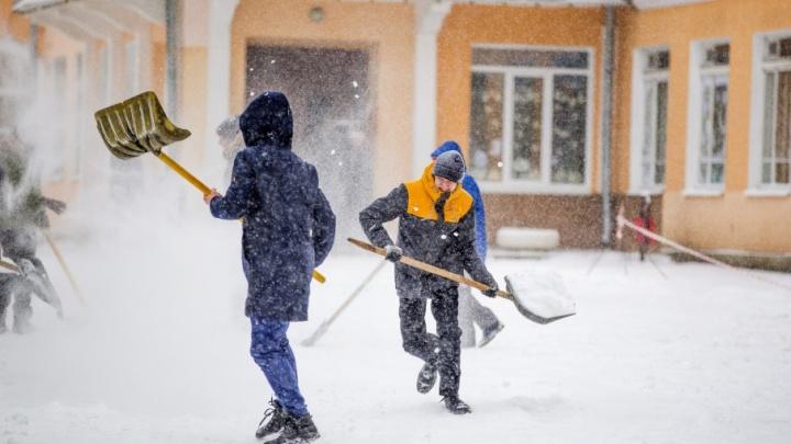 Под присмотром чиновников: кого заставили убирать ярославские тротуары