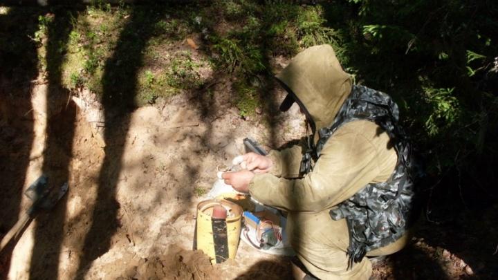 Отечественные боеприпасы и столетний снаряд нашли под Архангельском
