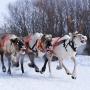 Открываем 8 мест Большого Урала для новогодних поездок