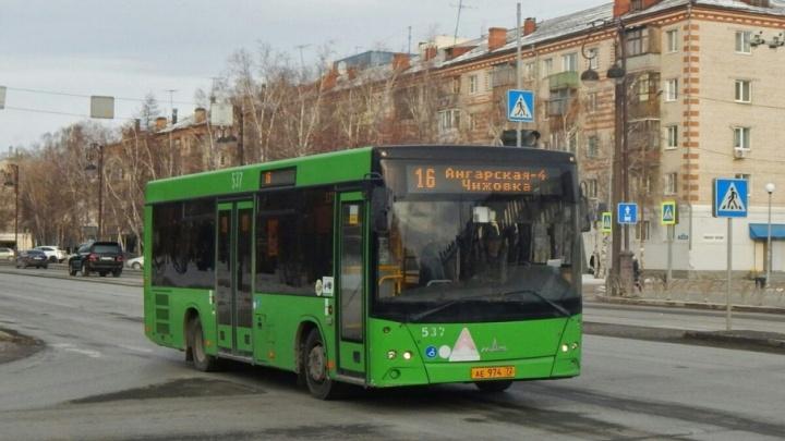 Тюменцы заметили автобус, катающийся по минскому маршруту