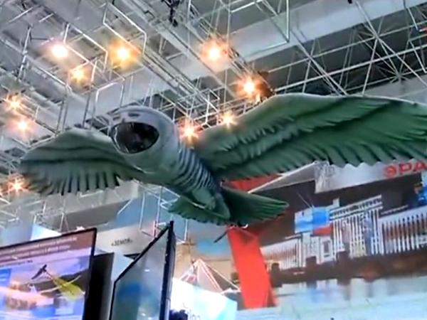 """скриншот видео ТРК """"Звезда"""""""