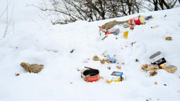 «Это свинство»: жители обнаружили свалку мусора в национальном парке «Самарская Лука»