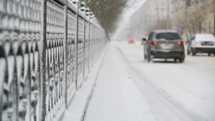 Волгоградские синоптики: «В конце марта в город может прийти весна»