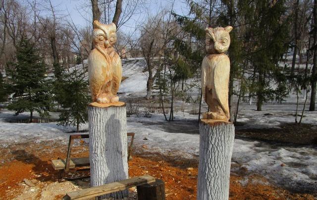 В Струковском саду поселились совы: высокие пеньки превратили в произведения искусства