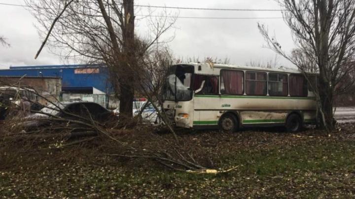 На Магистральной Lada Kalina вытолкнула ПАЗ с дороги в дерево