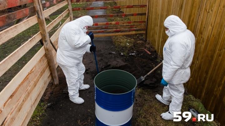 Грунт на месте радиационного «пятна» в Перми очистят от загрязнений