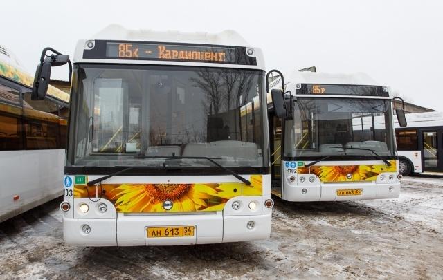 Волгоград потратит почти полмиллиарда на три новых автобусных маршрута