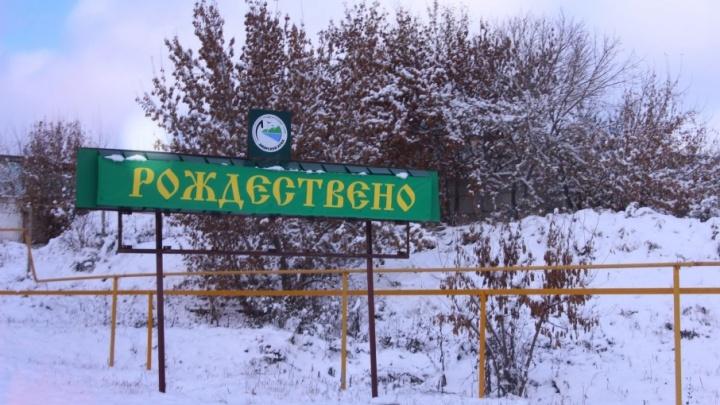 В нацпарке «Самарская Лука» сообщили об убитом лосе