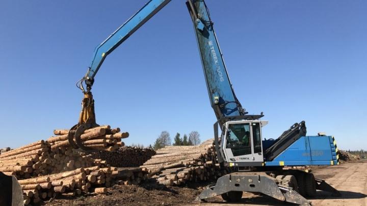 С начала года предприятия ГК «Титан» заготовили более 990 тысяч кубометров леса