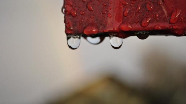 Не прячьте зонтики: во вторник на Архангельскую область снова обрушится ливень