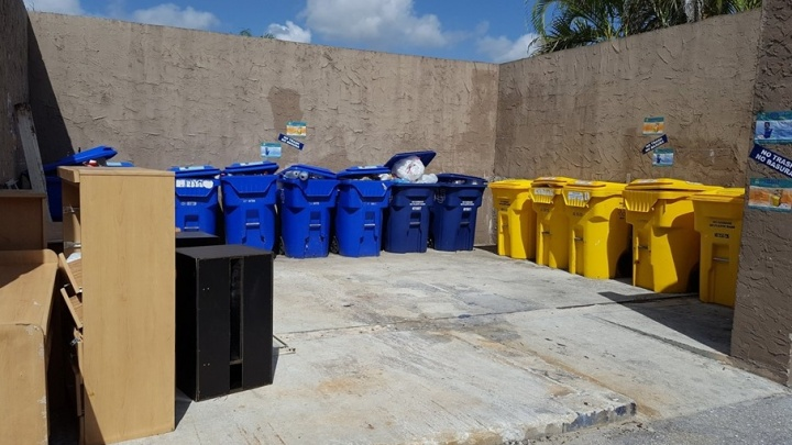 Ярославцы в Америке: здесь больше мусора