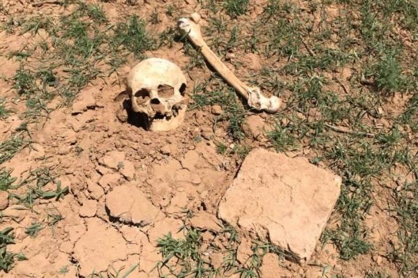 Останки обнаружили возле обрыва