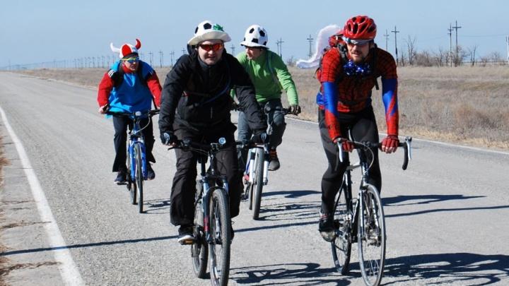 Волгоградцы собираются на 80-километровый «Забег фей»