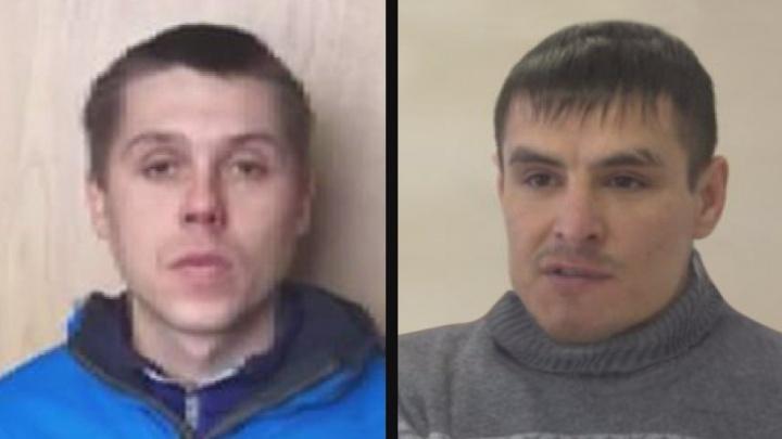 «Бабушка, я попал в ДТП»: пермская полиция ищет жертв телефонных мошенников