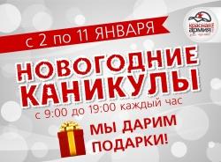 «Новогодние каникулы!» на «Красной Армии»
