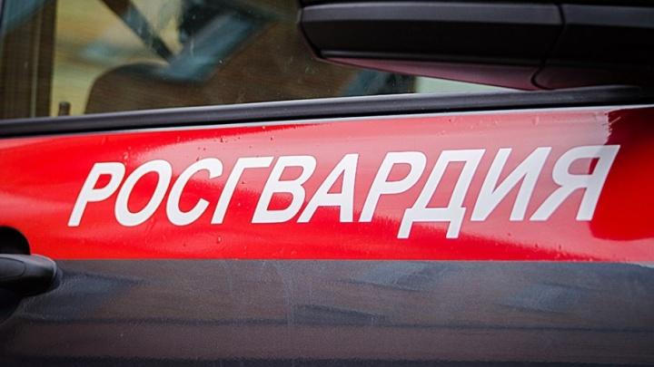 В Краснокамске задержали вооруженного пистолетом налетчика, ограбившего ломбард