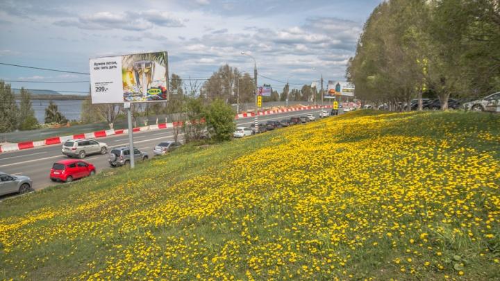 В Самаре 24 мая возобновят автомобильное движение на Волжском проспекте