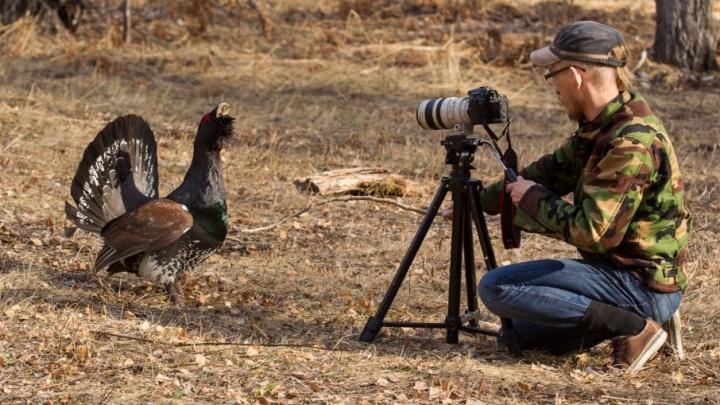 Челябинцев приглашают принять участие во всемирной переписи птиц
