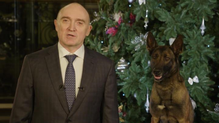 Под громкий лай: Борис Дубровский записал новогоднее поздравление с разыскной собакой
