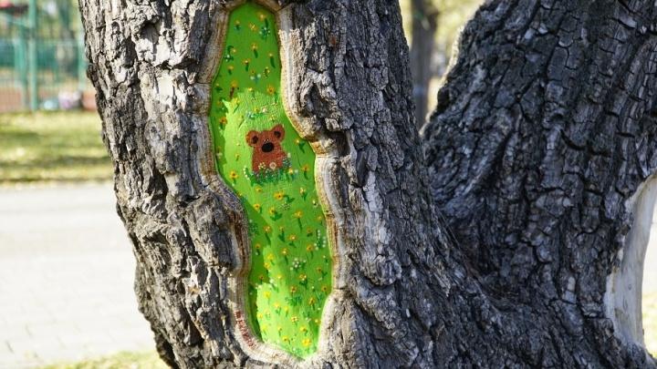 Дверь в Нарнию, совёнок, мишка на поле: тюменка разрисовала поврежденные деревья в Комсомольском сквере