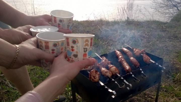 Мэр запретил ярославцам жарить шашлыки практически везде