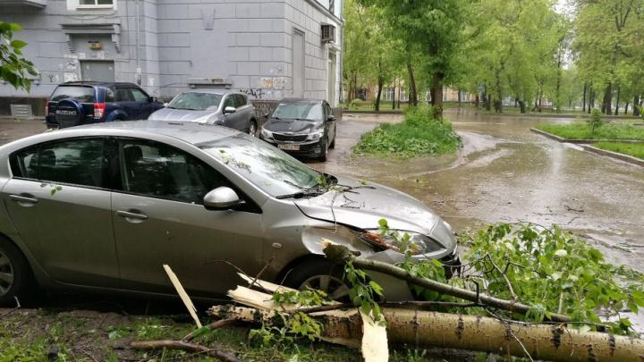 В Перми ураганный ветер опрокидывал стелы и ломал деревья