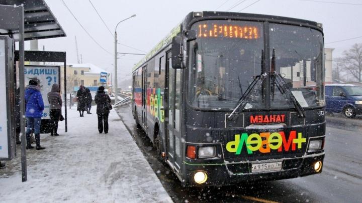 Транспорт в Ярославле выбился из расписания: на сколько опаздывают автобусы