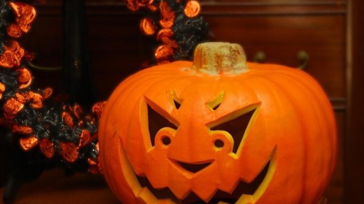Halloween, бесплатное кино, «Время джаза» и еще несколько способов отвлечься от суеты будней