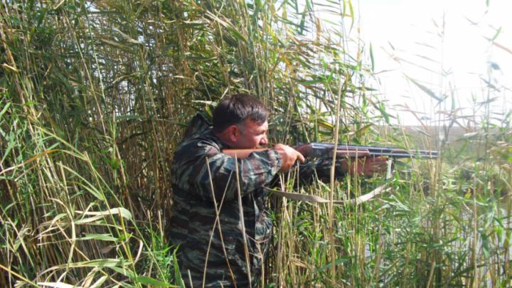 Во время чемпионата мира жителям Ростовской области запретят носить огнестрельное оружие