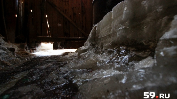 «Снова наш дедушка отправляется в плавание»: замурованный в лед дом ветерана тыла затопило