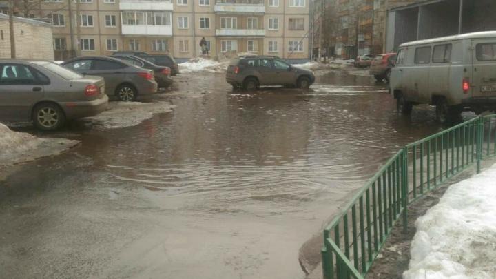 Благоустраивали, как могли: в Ярославле затопило двор, отремонтированный прошлым летом