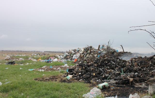 Стихийная свалка мешает фермерам Егорлыкского района приступить к посевам