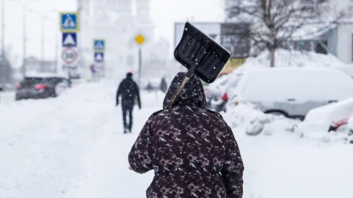 К концу недели Поморье ожидает потепление