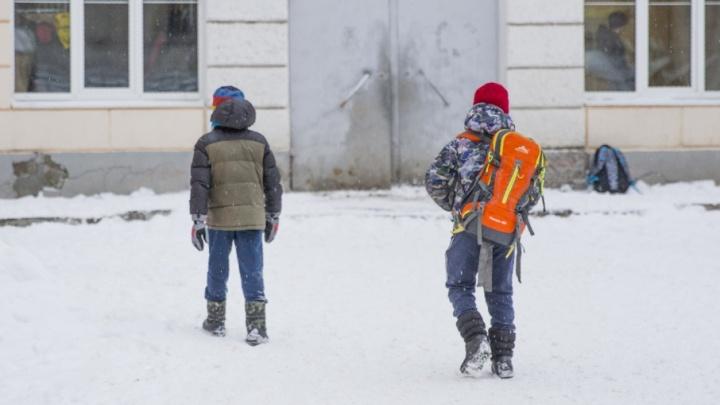 В Ярославле из-за снегопада продлили свободное посещение школ и детских садов