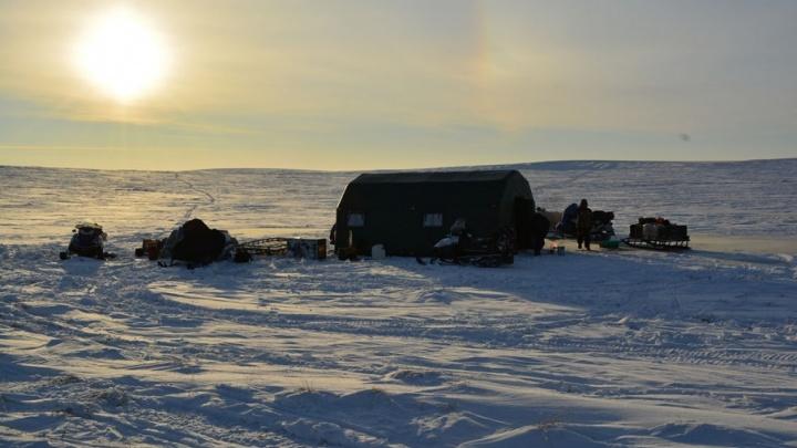 Тюменцы отправятся в арктическую экспедицию на остров Виктория