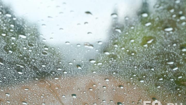 В выходные пермяков ожидает теплая и дождливая погода