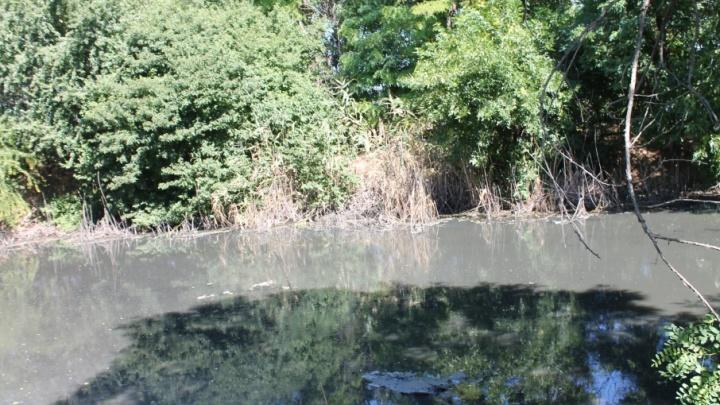 Чиновники обнаружили более 30 мест сброса отходов в  реку Темерник
