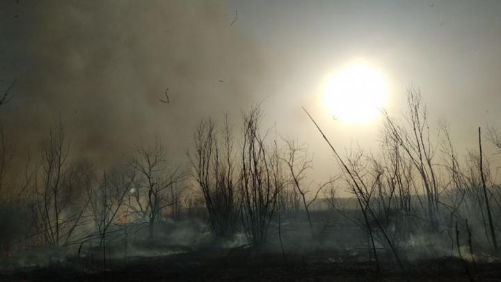 Серьезное предупреждение: на Дону высока вероятность возникновения пожаров