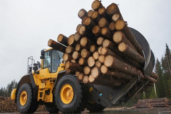 Игорь Орлов: создавать или нет в регионе новые лесные кластеры – выбор остаётся за компаниями